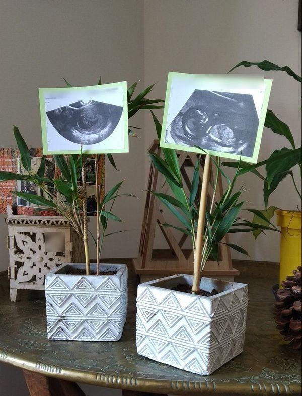 Une première écho et une autre, les petits pots de Marie pour annoncer sa grossesse à sa famille