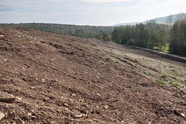 Le terrain dévasté où se trouvait autrefois la portion de forêt sous laquelle a été recherché le corps d'Estelle Mouzin.