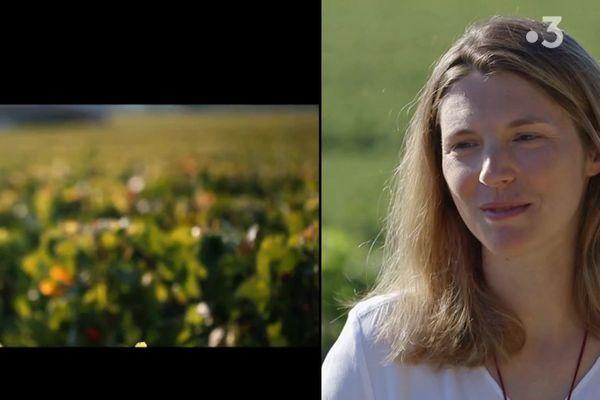 Stéphanie de Boüard-Rivoal incarne la 8e génération à la tête du mythique Château Angélus