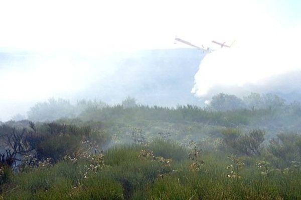 Saint-Etienne-du-Valdonnez (Lozère) - 10 hectares de forêt détruits par un incendie - 3 septembre 2013.