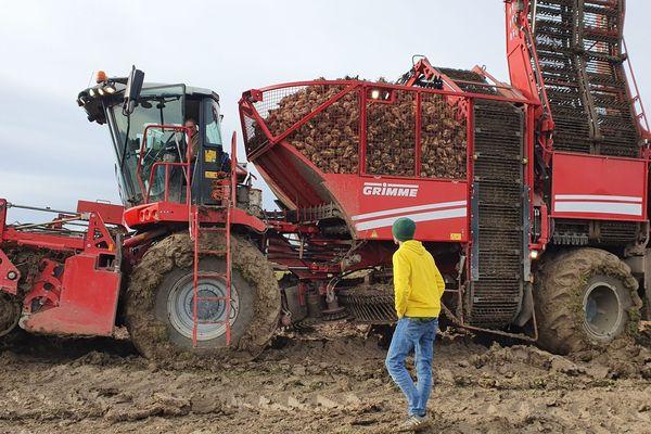 La sucrerie Bourdon vit ses derniers jours. Et les exploitants dans l'Allier font leur dernière récolte. Un bouleversement financier pour ces agriculteurs depuis l'annonce de la fermeture du site d'Aulnat.