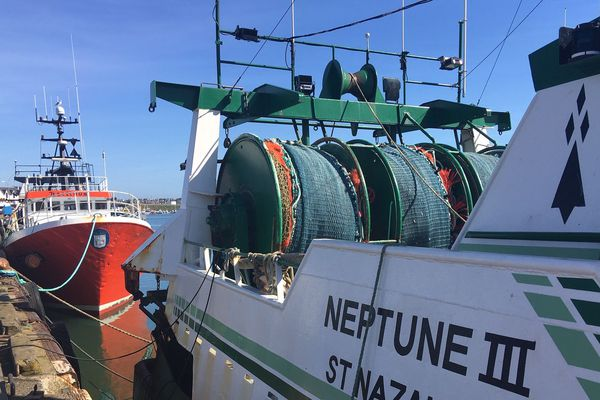 Bateaux sur le port du Guilvinec ce mardi matin. En ces temps moroses, où la pêche ne s'écoule pas, les bateaux rentrent mais ne repartent pas en mer.