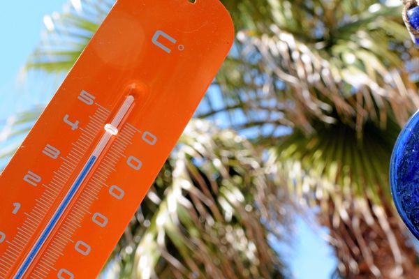 Cette année, il a fait chaud en Languedoc-Roussillon... En tous les cas, plus que la moyenne !