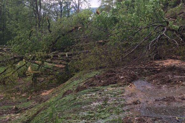 La route d'accès à irazein (09) a disparu sous les arbres et la boue.
