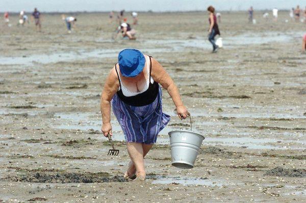 La pêche à pied au long du Gois à Fromentine (2006)