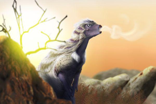 "La nouvelle espèce de dinosaure Heterodontosaurus tucki, surnommé ""Tucky"""