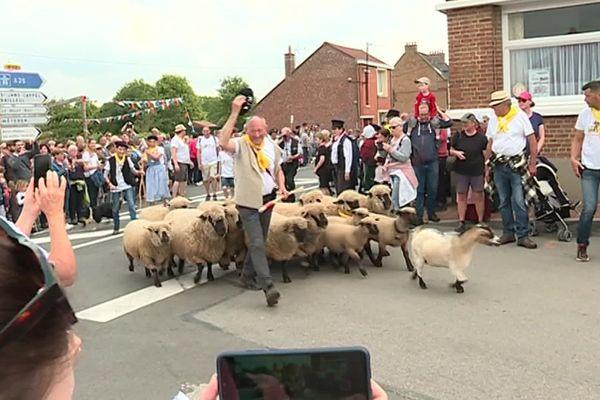 A Berthen ce lundi 10 mai : une fête autour des 17 moutons de ce berger