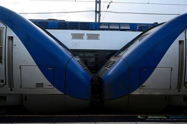 La grève des cheminots contre la réforme des retraites continue. Samedi 11 et dimanche 12 janvier, le trafic ferroviaire reste perturbé sur l'ensemble du réseau SNCF en Auvergne-Rhône-Alpes. Le point sur la région.