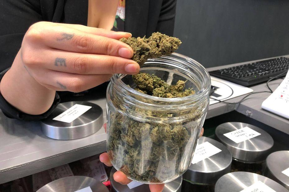Fougères. Les vendeurs de CBD, le cannabis légal, sur leur petit nuage