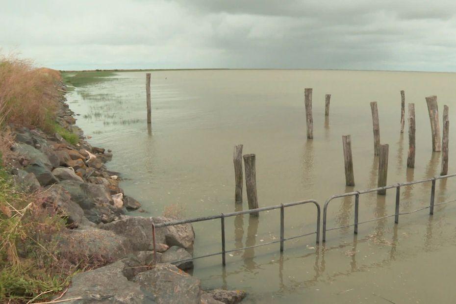 Marais Poitevin : la montée du niveau des océans le menace de disparition
