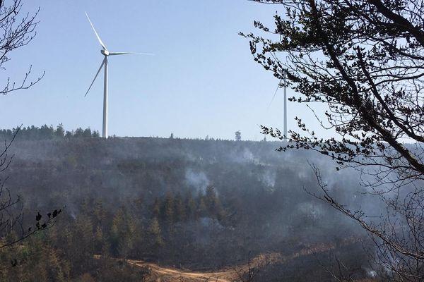 Le feu a brûlé 18 hectares de forêt à Arfons, dans le Tarn.