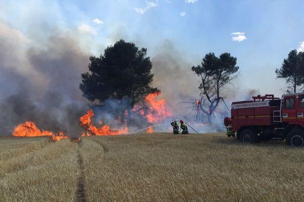 Le feu se propage vite dans les champs et les forêts attisé par un vent à 40 km/h.