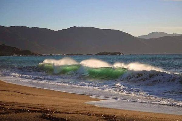 30/12/14 - Plage du Liamone en Corse-du-Sud