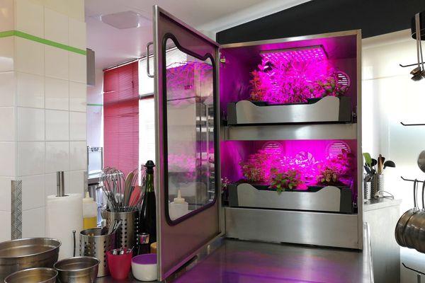 Le pousse-légume est une sorte de potager encastrable. Il trouve sa place dans les cuisines, notamment celles des restaurateurs.