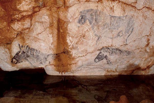 Ces peintures de chevaux ont été réalisées en - 19 000 avant notre ère.