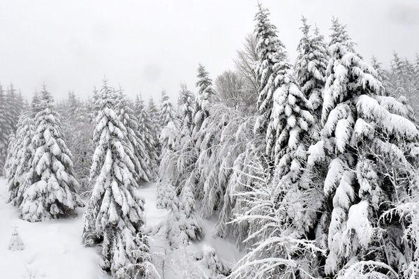 Les Vosges sous la neige (photo d'illustration)