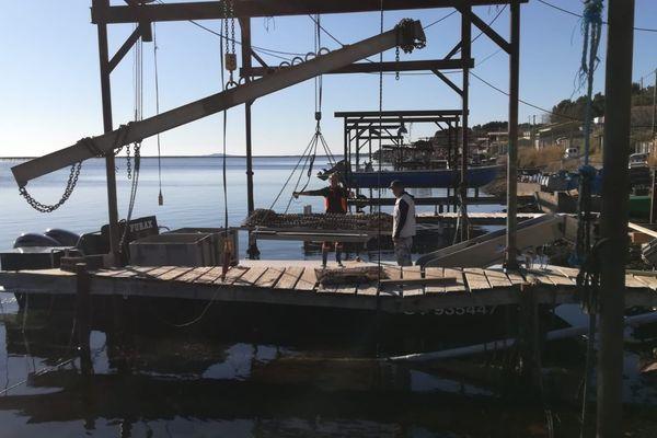 Ce matin, l'ambiance est morose sur le bassin de Thau, après l'annonce de l'interdiction de récolte et de vente de coquillages de la part de la préfecture de l'Hérault.