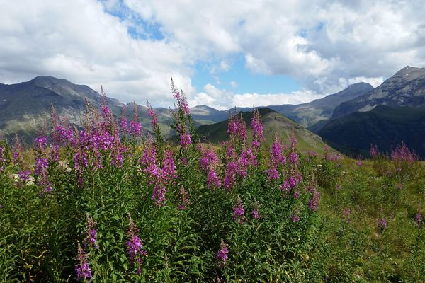 Un paysage des Hautes-Alpes, pour rêver à de futures balades en attendant le déconfinement …