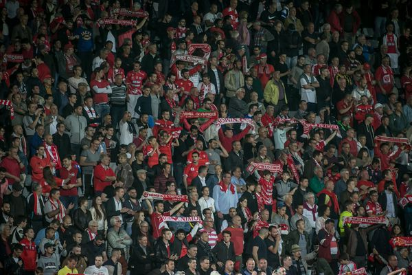 Les supporters nîmois dans les tribunes du stade des Costières - illustrations