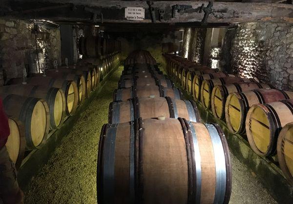 Dans la cave de Céline et Benoît Blet, du vin 100 % naturel