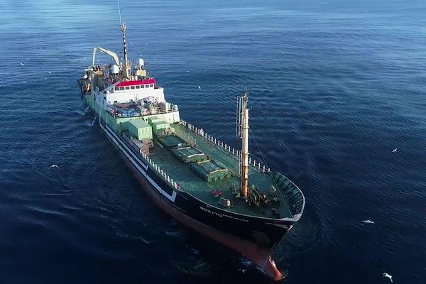 La pêche industrielle a un impact considérable sur la biodiversité marine