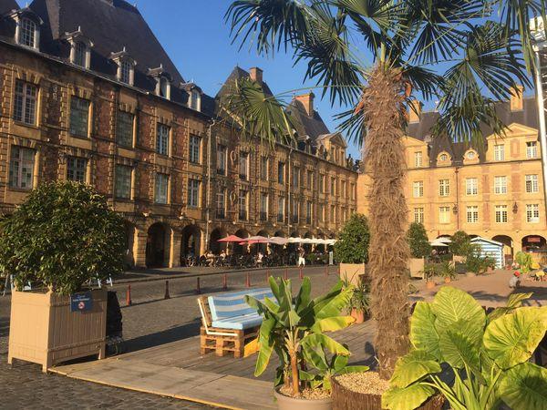 Un coin de verdure bien singulier place Ducale pendant la période des vacances d'été