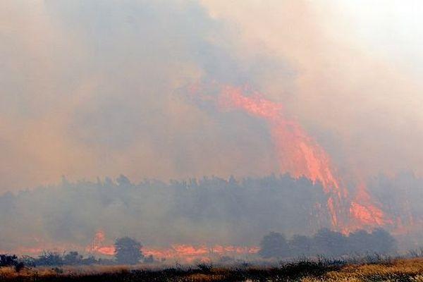 Peyriac-de-Mer (Aude) - 700 hectares de garrigue ravagés par un incendie - 30 juillet 2014