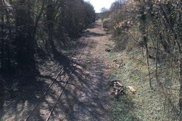 Les pourtours de la voie nettoyés : la promesse de balades à pied en attendant les vélorails