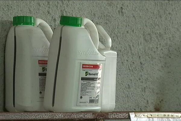 Le glyphosate, qui est très controversé, est l'herbicide le plus vendu au monde