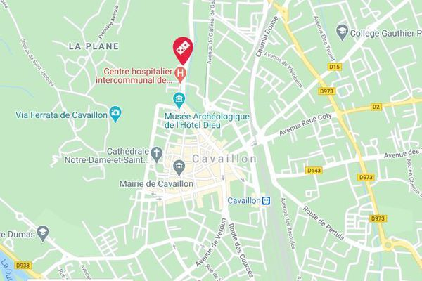 Les 200 m2 de la pizzeria située au 295 avenue George Clémenceau à Cavaillon sont partis en fumée.