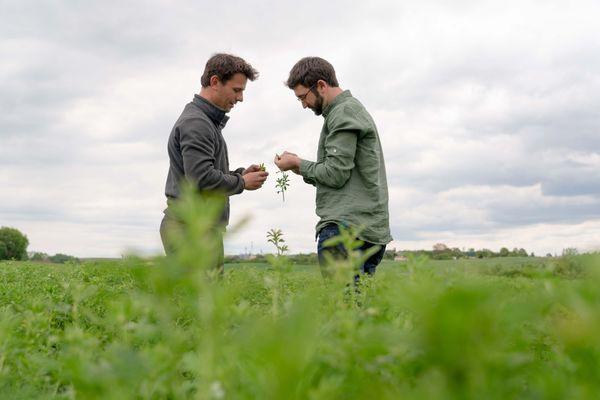 A Ancenis Terrena regroupe 21 500 adhérents, agriculteurs ou éleveurs
