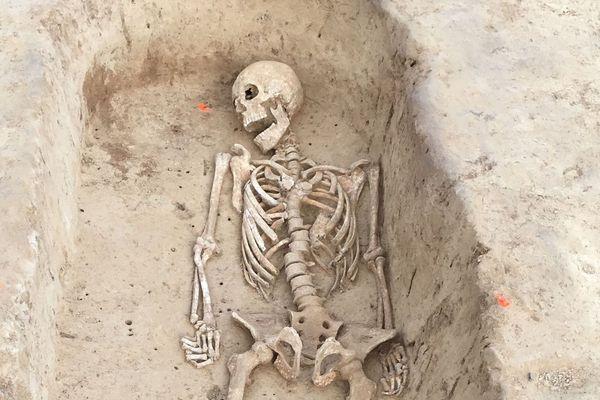 Squelette entier détouré dans l'une des vingt tombes du tumulus. Il s'agit d'un homme selon les premières analyses des archéologues