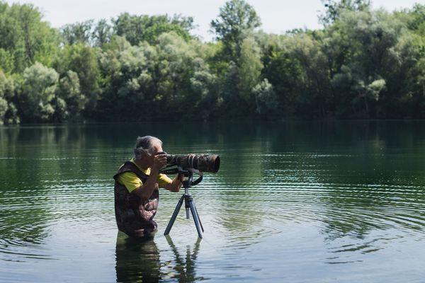 Jean-Charles s'approche au plus près des animaux pour les photographier...parfois, les pieds dans l'eau.