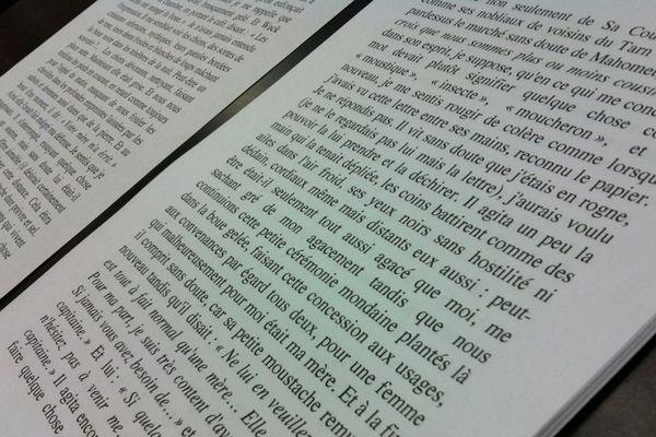 Les mots du Nouveau Roman, en vedette pendant deux jours à Toulouse.