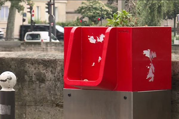 Ces caisses métalliques couplent un réservoir et une jardinière.