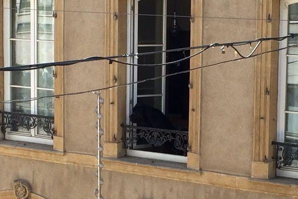 Un chien au balcon rue Serpenoise à Metz. A la recherche d'un peu d'air.
