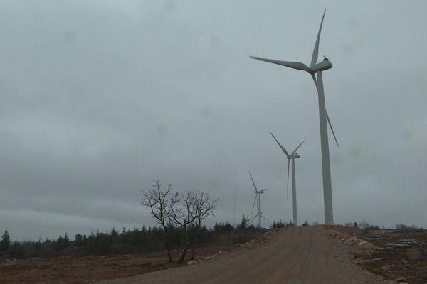 Des éoliennes du parc Eco Delta près d'Artigues.