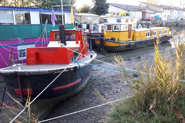 A Gardouch les péniches et bateaux posés sur le fond du canal sont solidement amarrés.