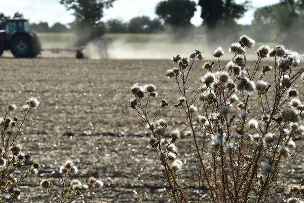 Les agriculteurs, notamment en montagne, vont percevoir des aides majorées pour faire face à la sécheresse. Photo d'illustration.