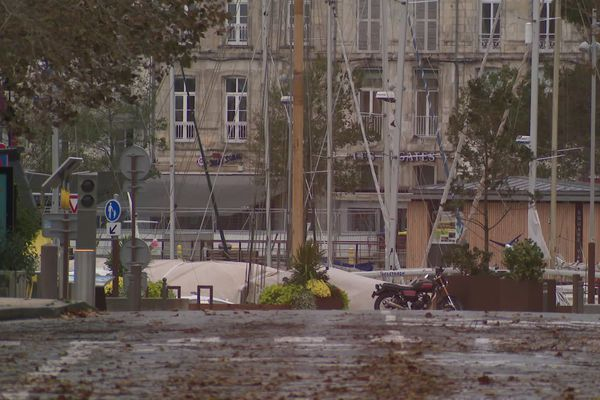 Les rues de La Rochelle jonchées de feuilles et de branchages.
