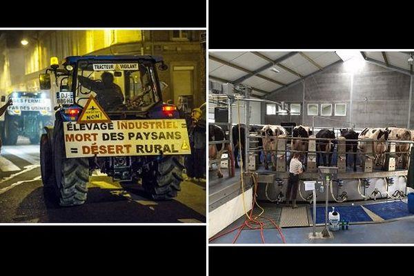 A gauche, une manif de la Conf. paysanne. A droite, le manège de traie de la ferme des mille vaches.