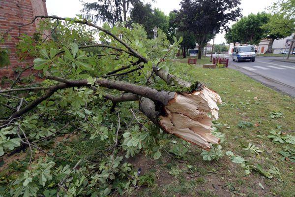 Gare aux branches d'arbres et autres objets situés sur les toitures. Le vent pourrait souffler à plus de 90 km/h dans la nuit de lundi à mardi dans la Loire, le Rhône et l'Ain