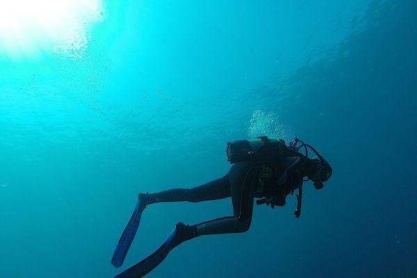 Selon une étude menée par AP-HM, la plongée sous-marine soignerait toutes formes de stress et d'anxiété post-traumatique.