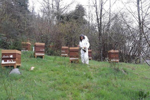 Françoise Sordillon, apicultrice à Bertignat, près d'Ambert, qui vérifie ses ruches.