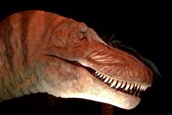 Les grandes dents du féroce Tarbosauru vous accueille au Palais de la découverte à Paris