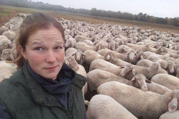 Virginie Ebner possède 350 brebis à Sélestat