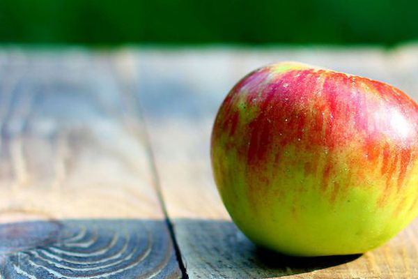 La pomme le paradis du pesticide.