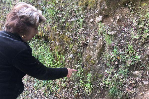 Françoise connait tous les coins où trouver l'herbe de l'Ascension