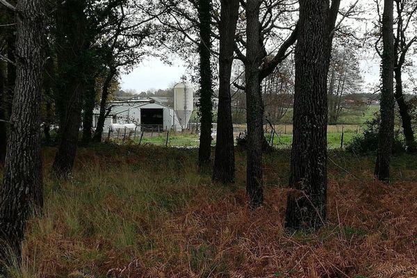 Zone de protection et de surveillance d'un élevage touché par le virus autour de Bénesse-Maremnes dans les Landes.