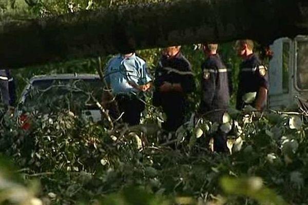 Saint-Just-d'Ardèche (Ardèche) - un Nîmois tué par la chute d'un arbre dans un camping. Pompiers et gendarmes sécurisent les lieux - 21 juillet 2014.
